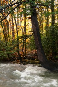 Fred Eberhart, Cold Water Finds Warm Light, digital photograph