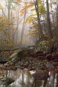 Fred Eberhart, White Oak Canyon, digital photograph