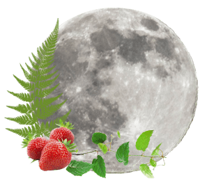 Strawberry Moon in June