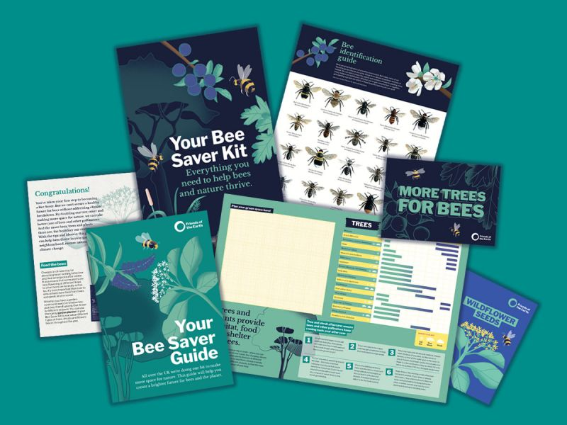 Get a Bee Kit To Help Save Our Bees