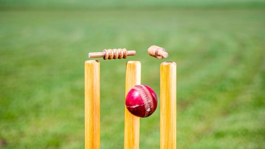 Celebrate With Broadwindsor Cricket Club
