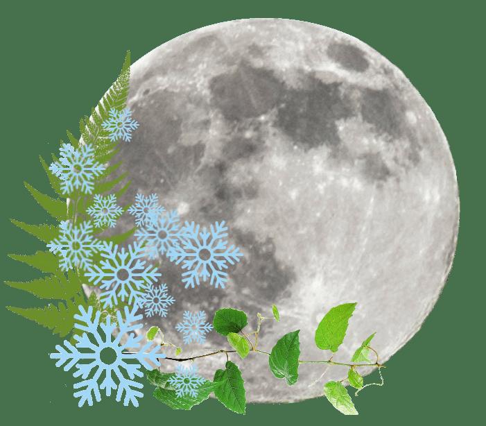Full Moon on Wednesday, 30th December