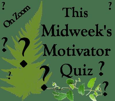 Midweek Motivator Quiz – Wednesday 17th March