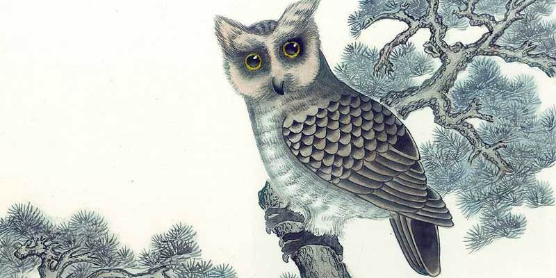 chinese paiting river owl