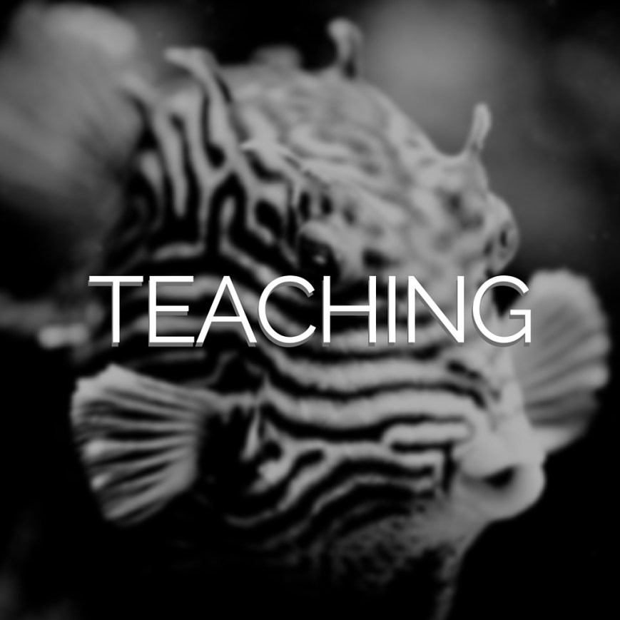 Link to Teaching page