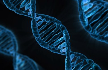 What's In Your Institution's DNA?