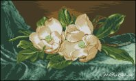 1268241768_g-666-magnolii