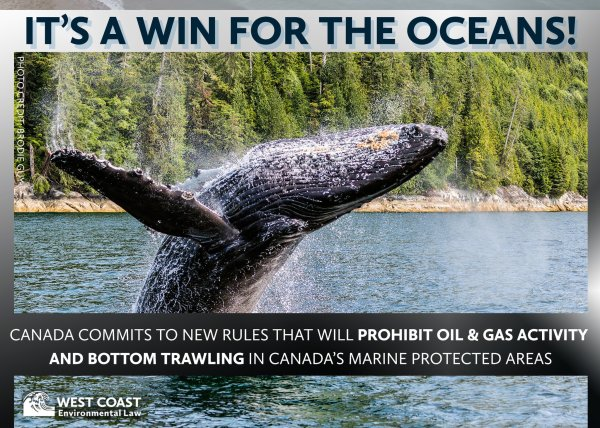 It's a win for the oceans!