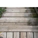 Niagara Deck - Stairs