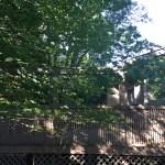 Bracebridge Porch - Before Construction Right Side