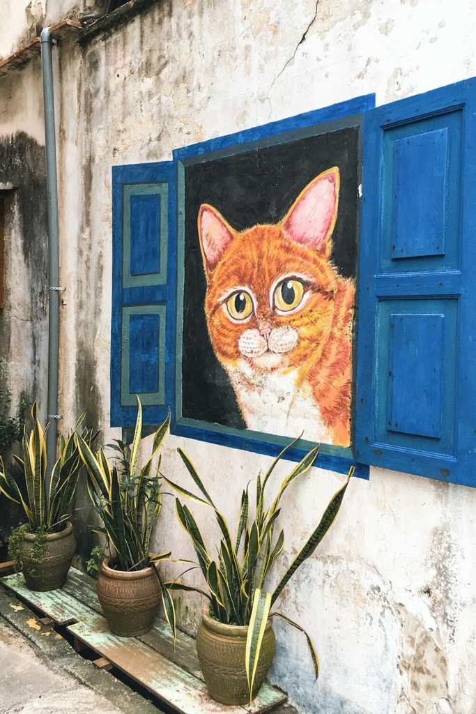 Window painted on a wall with a giant cat looking out