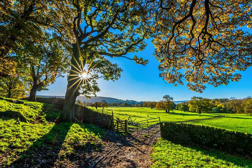 Yorkshire Sunshine UK