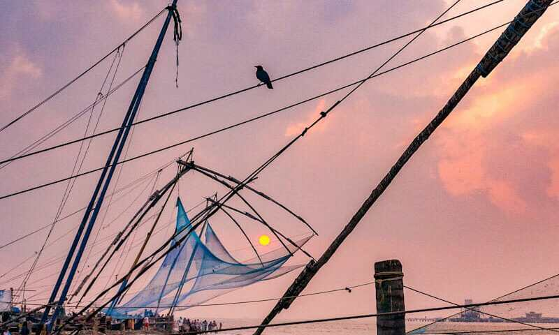 The Chinese fishing nets are the most iconic sight in Kochi