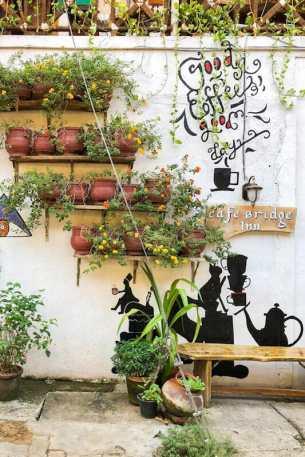 Flower and plant pots outside the Cafe Bridge Inn in Kochi