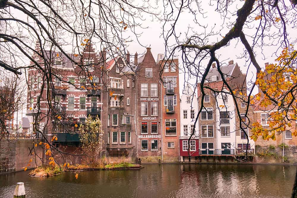 Traditional Dutch buildings built by the water with tree branches in front