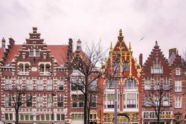 Traditional Dutch buildings with trees in front