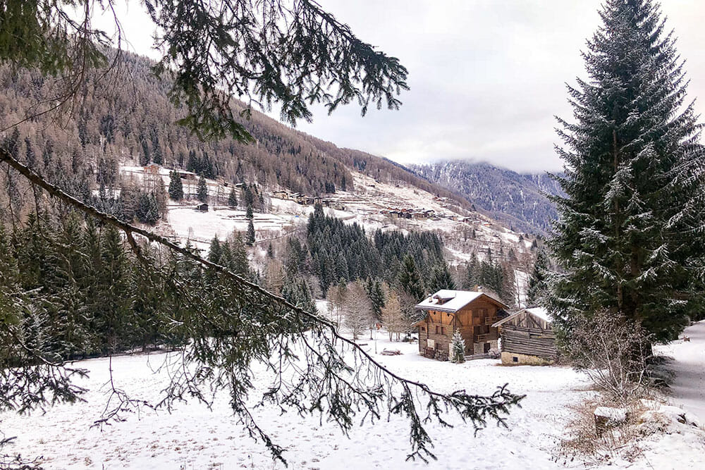 Valley with trees and a wooden chalet all covered in snow