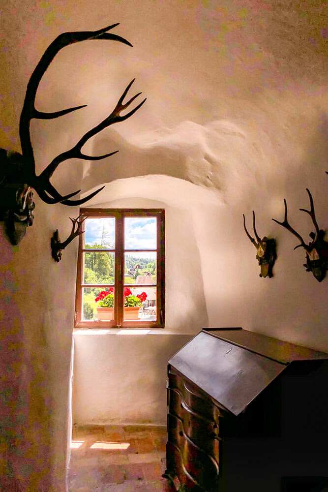 Small room with stag horns on the wall and a small window