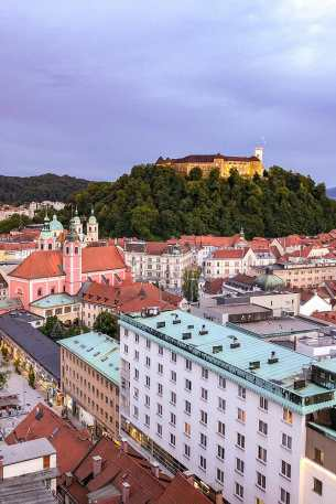 View of the Cathedral and Ljubljana castle