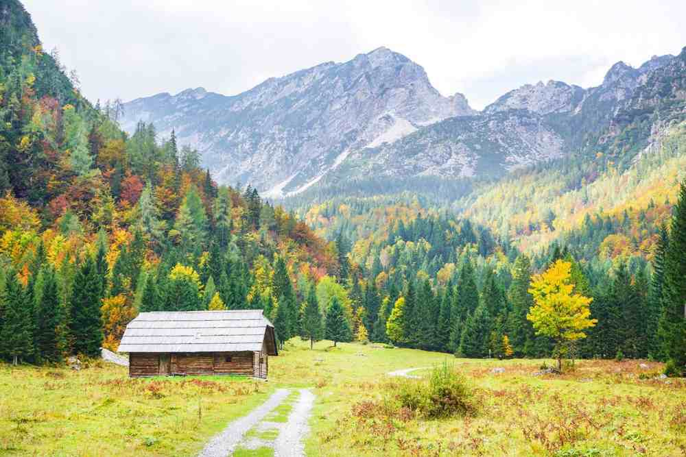 Wooden hut at the end of a path on a plain with trees and mountains in the background