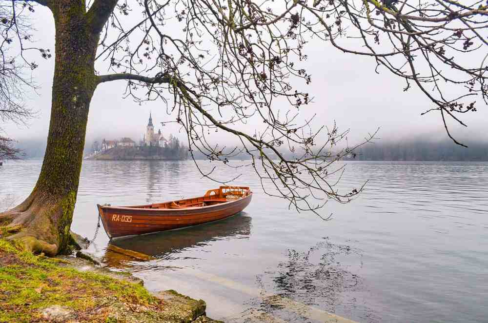 Boat tied to a tree on the lake shore with a building in a small island in the distance