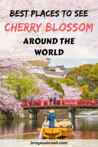 Spring is cherry blossom time, and nature celebrates by putting up a show. Here are some of the best places where to see cherry blossoms around the world. #cherryblossoms #sakura