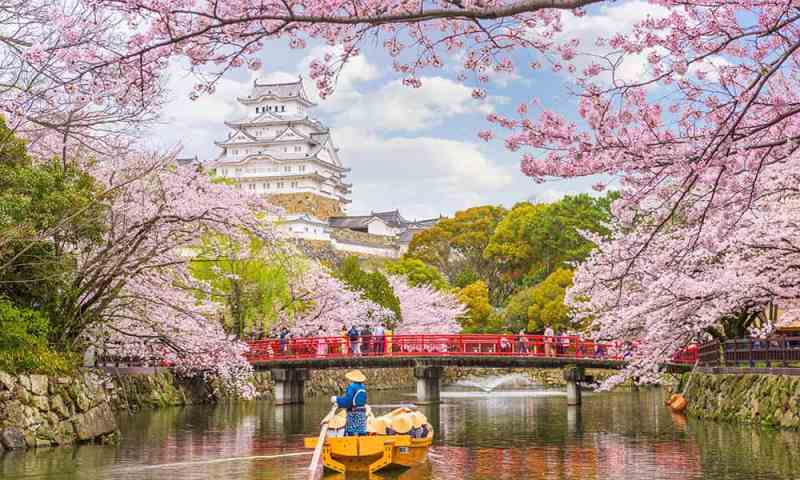 Where to see cherry blossoms in the world