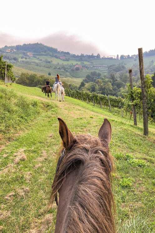 Horseriding-in-Vescovado,-Lombardy-1