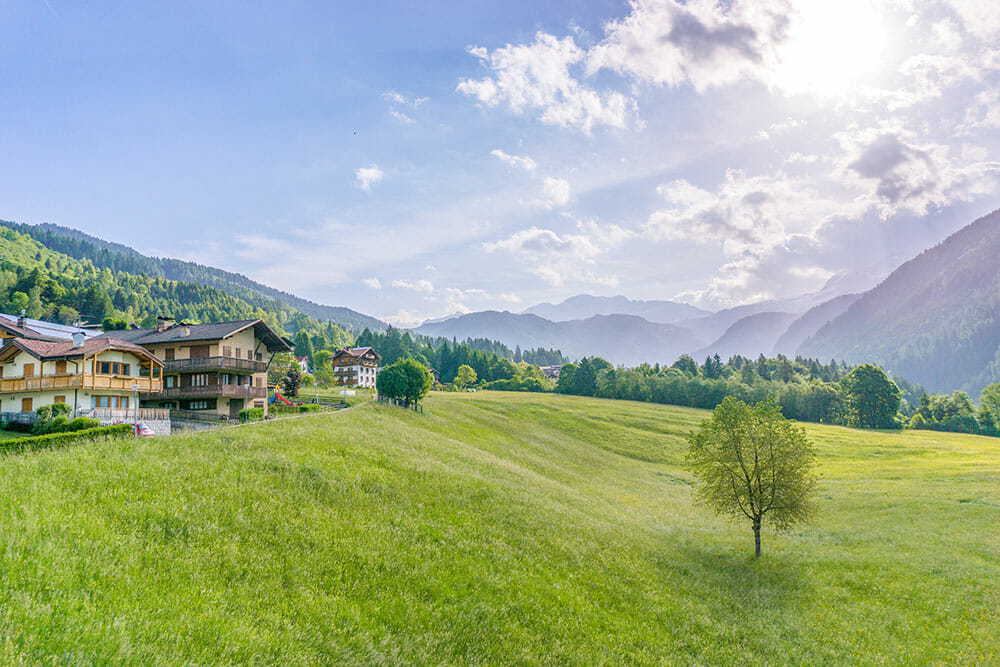 Open rolling field of grass with alpine chalets on one side and mountains in the background