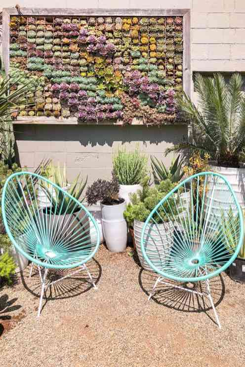 Two green garden chairs underneath a succulent wall