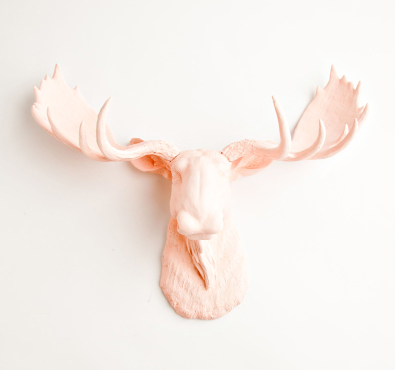 Faux Moose Taxidermy (resin)