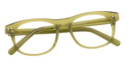 Clear Green Wayfarer Glasses