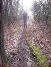 Appalachian Trail 062