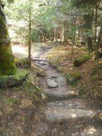Appalachian Trail 185