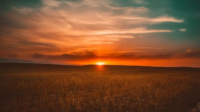 Photo of Sunset - New Zealand vs West Indies