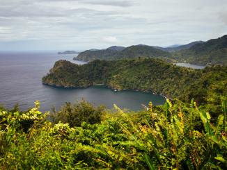 Photo of beautiful Trinidad and Tobago, Nicholas Pooran's home country