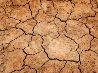 Photo of cracked soil - Symbolizes cracks in the cricket structure