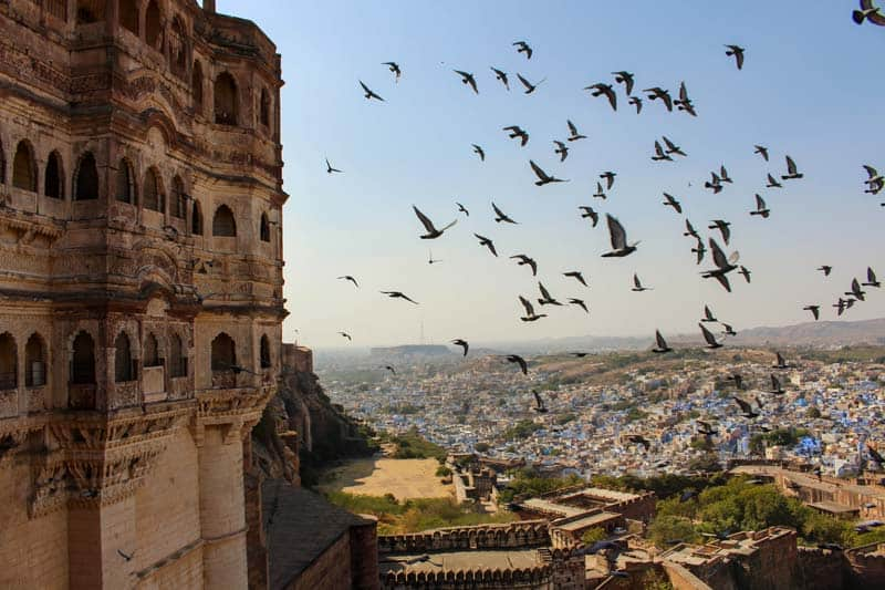 must see india jodhpur fort