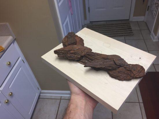 Glueing bark to make a scenic terrain