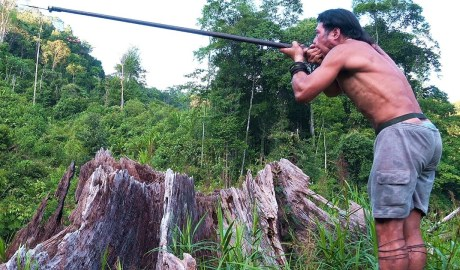 Borneo Death Blow - Documentary