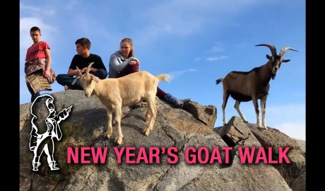 Browsey Acres | The Family Takes Their New Year's Goat Walk