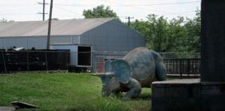 Dinosaur found in Park Hill. (Branden Klayko)