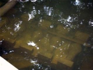 A piece of the damaged Hert Memorial Bridge submerged in Beargrass Creek. (Branden Klayko / Broken Sidewalk)