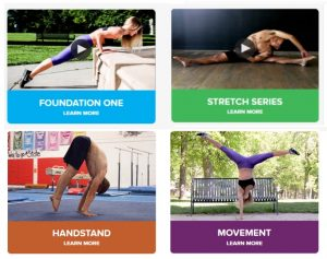 Gymnastic Bodies - learn gymnastics at home, at your pace