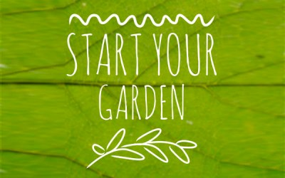 The 3 Things You Need to Start Your Garden