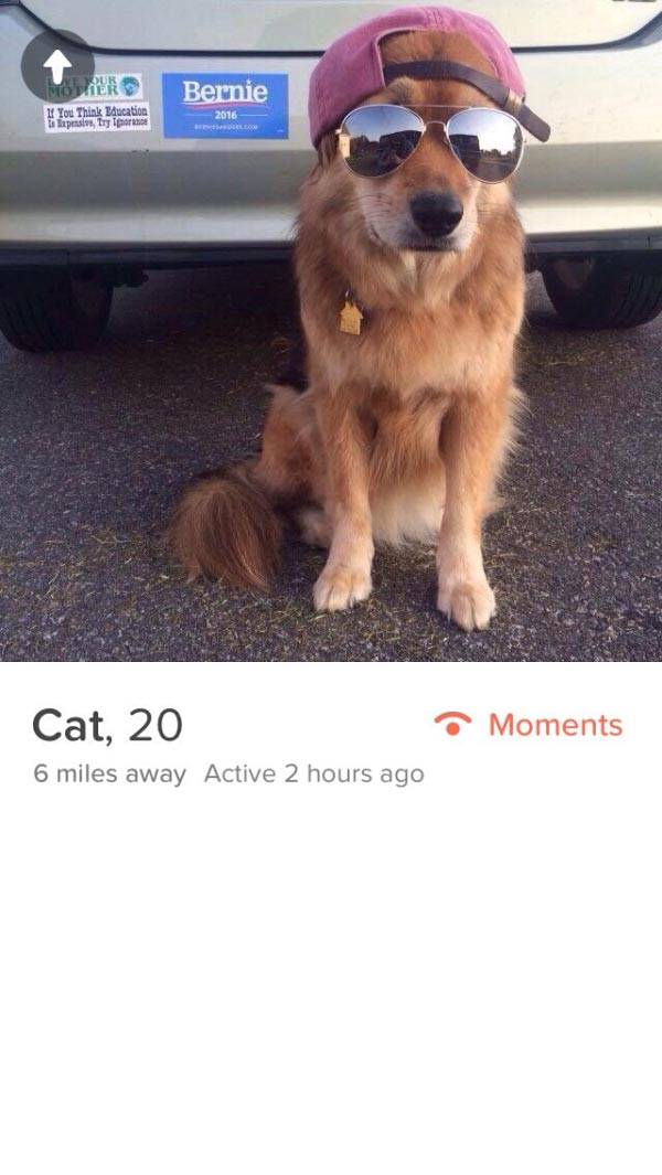 these-tinder-profiles-will-leave-you-saying-wtf-36