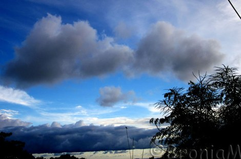 There is something about clouds that attracts me. I can stare at them the whole day.