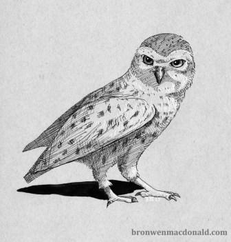 2017-12-13 Inked Owl web