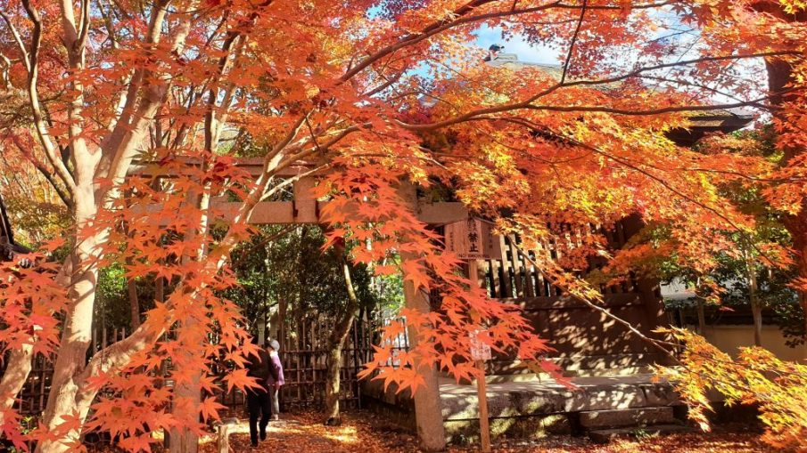 京都遊學 - 照片來源: 網友秀芬
