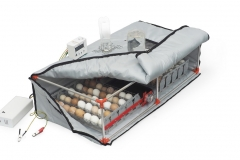 Incubator for eggs Broody Double Micro Battery 90